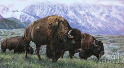 Grand Teton Bison Art Print by Deb LaFogg-Docherty