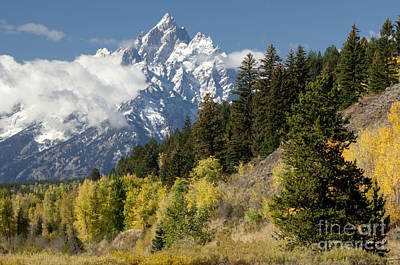 Photograph - Grand Teton by Sandra Bronstein