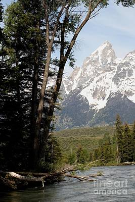 Art Print featuring the photograph Grand Tetons Vertical by Living Color Photography Lorraine Lynch