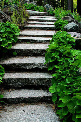Photograph - Granite  Steps    Extended  View by William Meemken