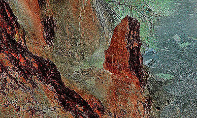 Art Print featuring the photograph Grape Creek by Louis Nugent