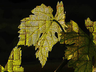 Stopper Mixed Media - Grape Leaves by Jesus Nicolas Castanon