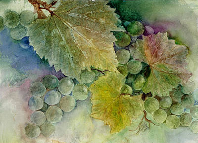Grapes II Art Print by Judy Dodds