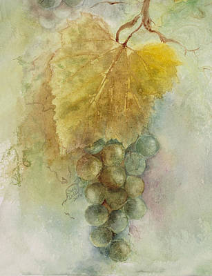 Grapes IIi Art Print by Judy Dodds