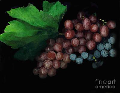 Grapes In Black Art Print by Casey DiDonato