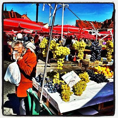 Grapes Photograph - Grapes Of Wrath. #grapes #zagreb by Richard Randall