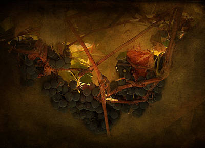 Grapes Art Print by Peter Labrosse