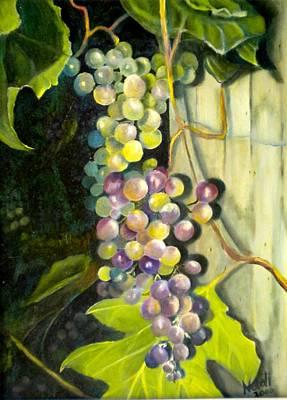 Photograph - Grapes by Renate Nadi Wesley