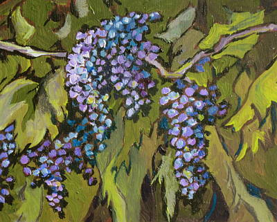 Painting - Grapevine by Sandy Tracey