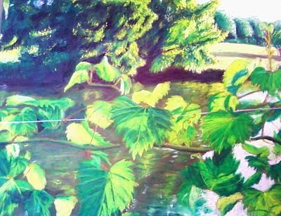 Grapevines Toledo Botanical Gardens Art Print by Samuel McMullen