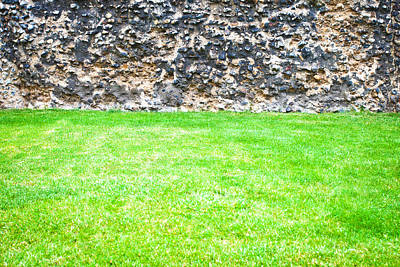 Royalty-Free and Rights-Managed Images - Grass and stone wall by Tom Gowanlock