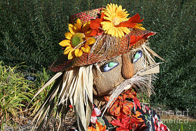 Photograph - Grass Moustache by Susan Herber