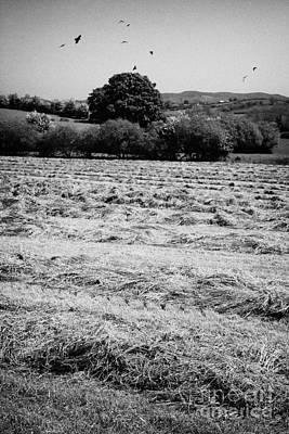 Grass Silage Sileage Making In A Field In Ireland Art Print by Joe Fox