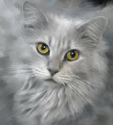 Wall Art - Digital Art - Gray Tabby by Ron Morecraft