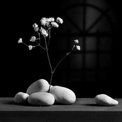 Photograph - Gray Variation - Rocks by Ovidiu Bastea