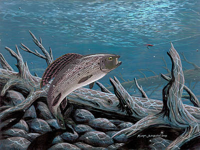 Painting - Grayling by Kurt Jacobson