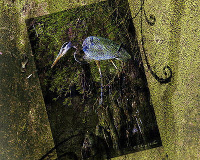 Digital Art - Great Blue Heron - Abstract by J Larry Walker