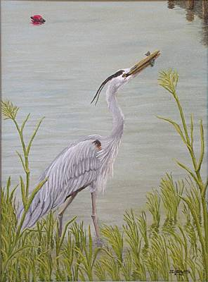 Great Blue Heron Art Print by Jim Ziemer