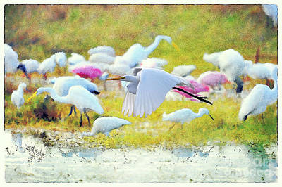 Art Print featuring the photograph Great Egret Flying by Dan Friend