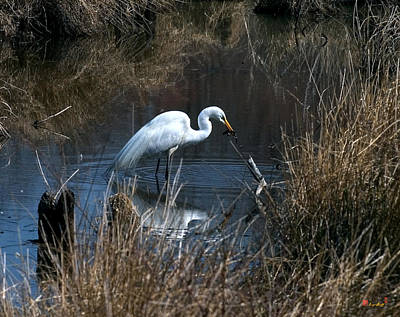 Art Print featuring the photograph Great Egret With Fish Dmsb0034 by Gerry Gantt