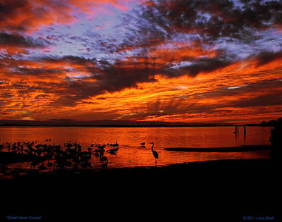 Photograph - Great Heron Sunset by Larry Beat