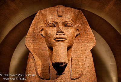 Lourve Photograph - Great Sphinx Of Tanis by Anthony Festa