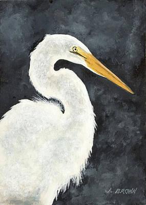 Great White Egret Art Print by John Brown