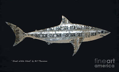 Mixed Media - Great White Shark by Bill Thomson