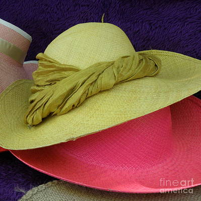 Green And Pink Hats Art Print by Lainie Wrightson