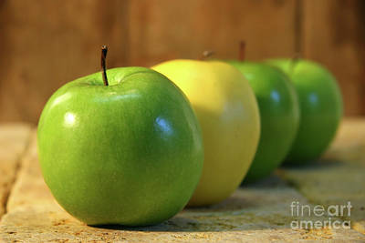 Green And Yellow Apples Art Print by Sandra Cunningham