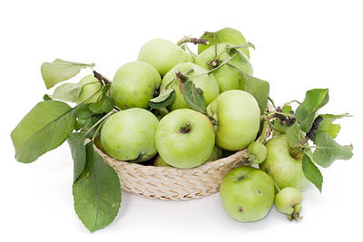 Green Apples In Basket Art Print by Aleksandr Volkov
