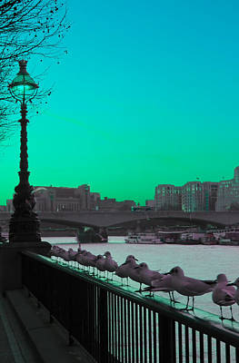 Psychedelic Photograph - Green Day In London by Jasna Buncic