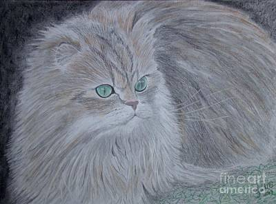 Wall Art - Drawing - Green Eyes by Cybele Chaves