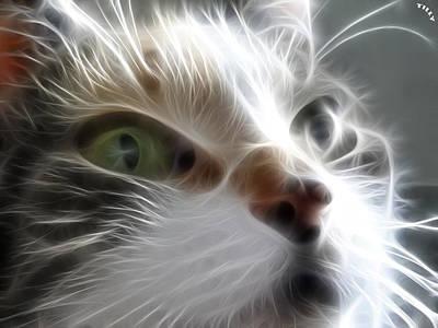 Kittens Digital Art - Green Eyes by Tilly Williams