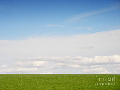 England Photograph - Green Field by Pixel Chimp
