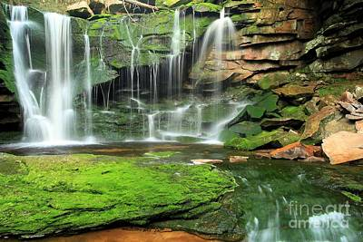 Photograph - Green Forest Falls by Adam Jewell
