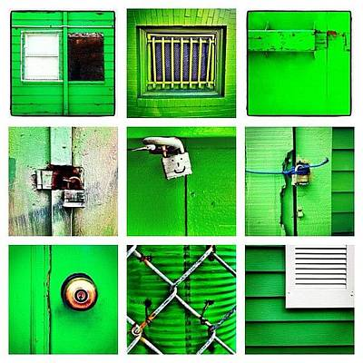 Green Wall Art - Photograph - Green by Julie Gebhardt
