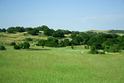 Green Meadow Art Print by Terry Thomas