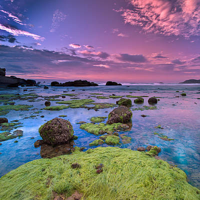 Green Moss Covered Rocks At Sunrise Art Print by AndreLuu