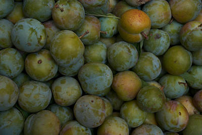 Green Plums Fill A Bin Outside A Local Art Print by Heather Perry