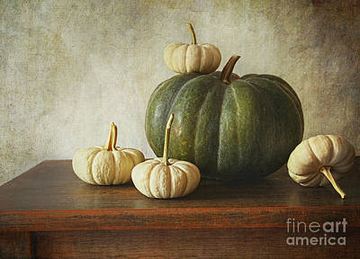 Melon Photograph - Green Pumpkin And Gourds On Table  by Sandra Cunningham
