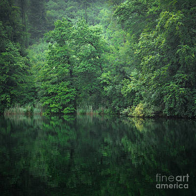Photograph - Green Ripples by Alexander Kunz