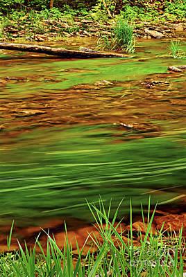 Green River Print by Elena Elisseeva