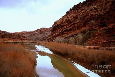 Photograph - Green River by Julie Lueders