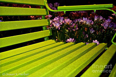 Photograph - Green Seat by Susan Herber