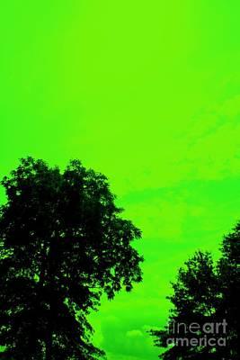 Mike Grubb Wall Art - Pyrography - Green Sky 1 by Michael Grubb