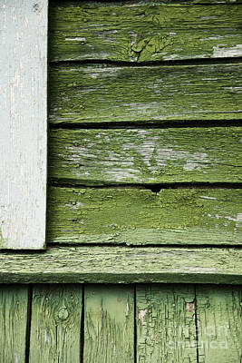 Print featuring the photograph Green Wooden Wall by Agnieszka Kubica
