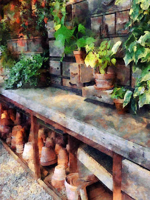 Photograph - Greenhouse With Flowerpots by Susan Savad
