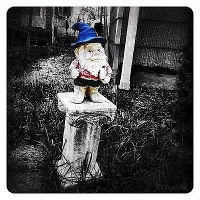 Ohio Photograph - Greenville's Garden Gnome by Natasha Marco