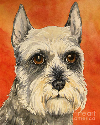 Miniature Schnauzer Painting - Grey And White Schnauzer by Cherilynn Wood